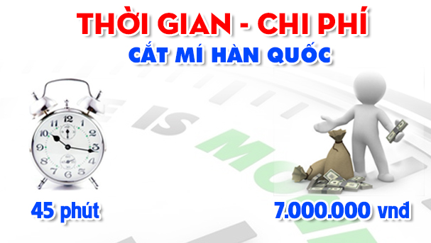 Cat mi Han Quoc copy